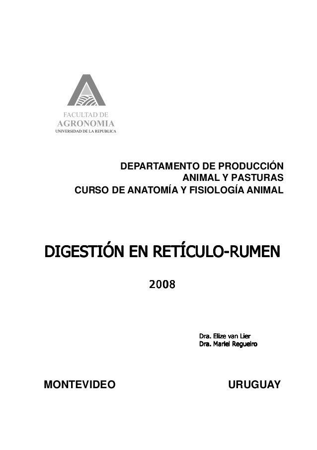 29  DEPARTAMENTO DE PRODUCCIÓN ANIMAL Y PASTURAS CURSO DE ANATOMÍA Y FISIOLOGÍA ANIMAL  DIGESTIÓN EN RETÍCULO-RUMEN 2008  ...