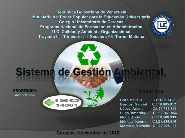 Son sistemas organizados y planificados por los que la empresa controla lasactividades, productos y procesos que causan, o...