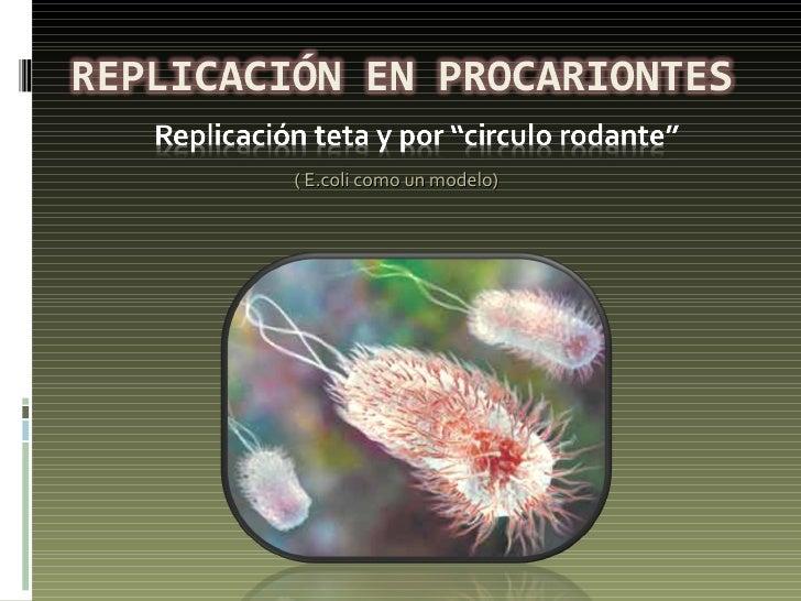 ( E.coli como un modelo)