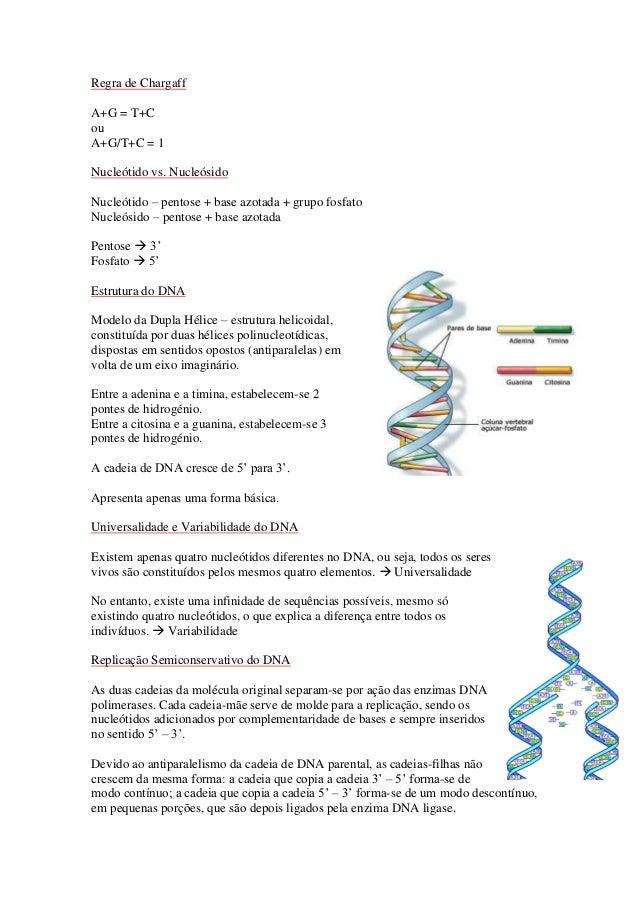 Regra de ChargaffA+G = T+CouA+G/T+C = 1Nucleótido vs. NucleósidoNucleótido – pentose + base azotada + grupo fosfatoNucleós...