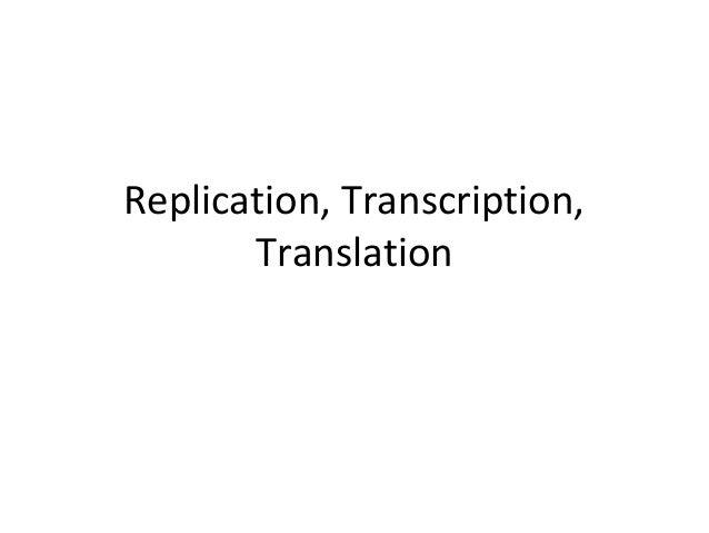 Replication, Transcription, Translation