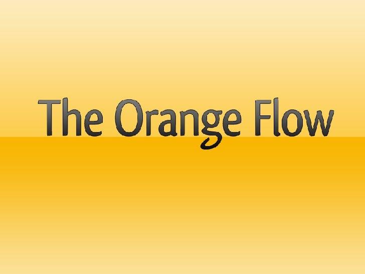 Report Orange Flow Report @ Ecrea Summer School