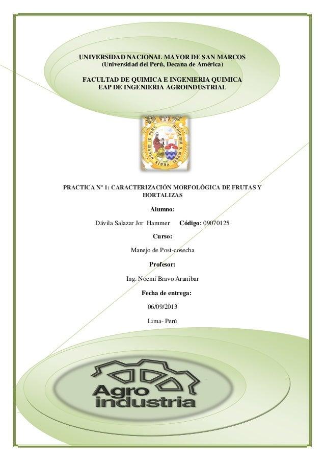 UNIVERSIDAD NACIONAL MAYOR DE SAN MARCOS (Universidad del Perú, Decana de América) FACULTAD DE QUIMICA E INGENIERIA QUIMIC...
