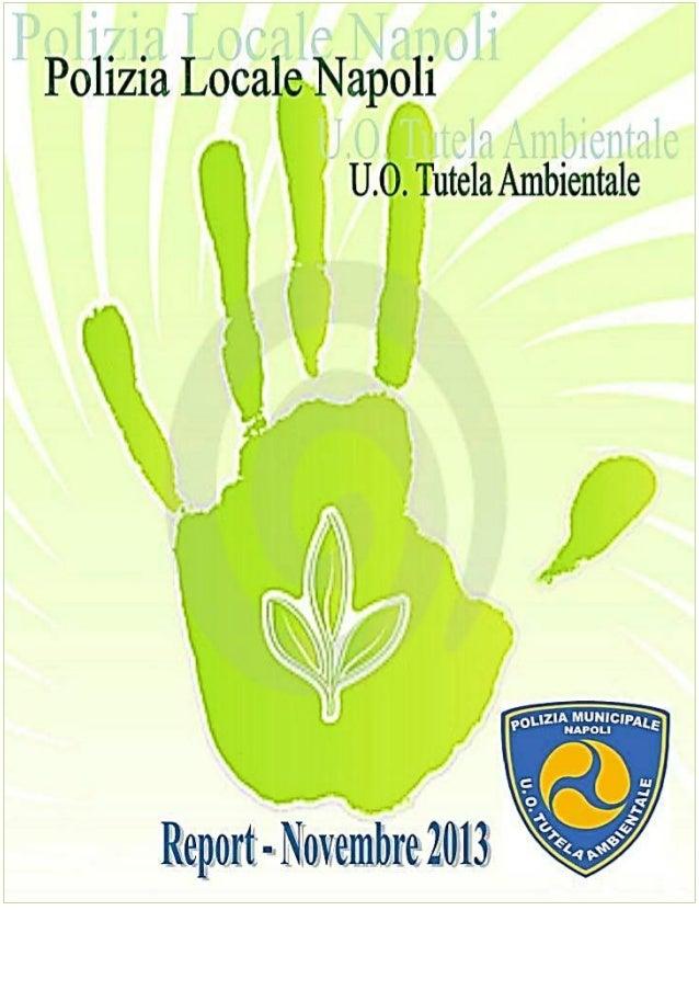 Denunce, multe e sequestri della Polizia Ambientale - Novembre - Dicembre 2013