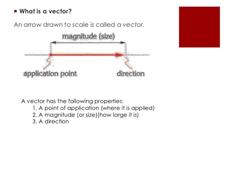 Physics Scalar and Vector quantities Flashcards  Quizlet