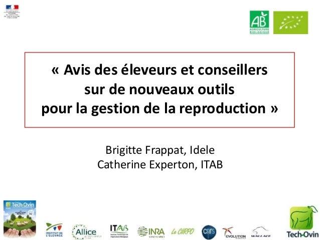 « Avis des éleveurs et conseillers sur de nouveaux outils pour la gestion de la reproduction » Brigitte Frappat, Idele Cat...