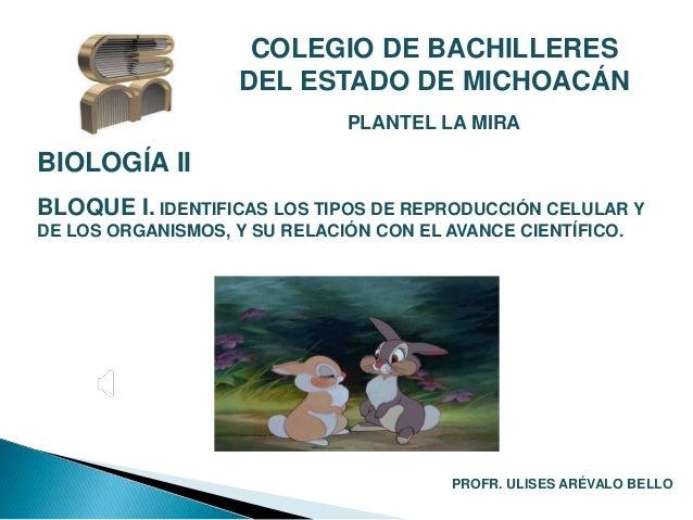COLEGIO DE BACHILLERES  DEL ESTADO DE MICHOACÁN  PLANTEL LA MIRA  BIOLOGÍA II  BLOQUE I. IDENTIFICAS LOS TIPOS DE REPRODUC...