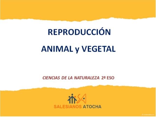 Desarrollo unidad en cooperativo-Reproducción animal y vegetal