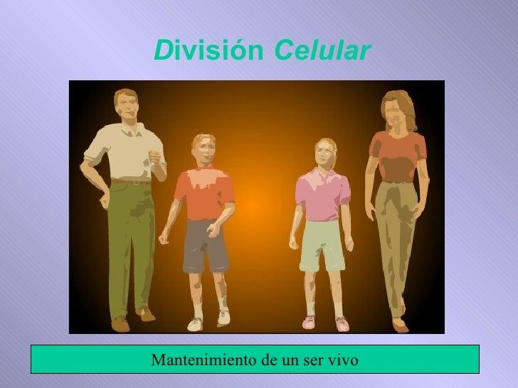 División Celular     Mantenimiento de un ser vivo