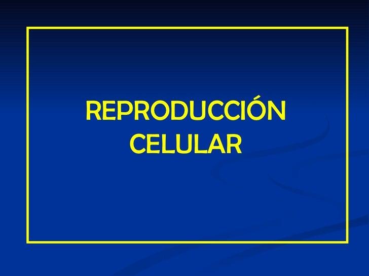 Reproduccion celular