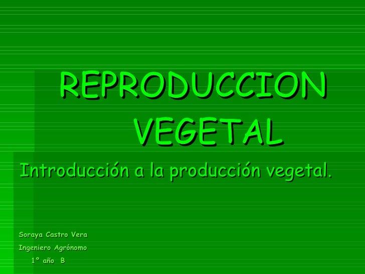 REPRODUCCION  VEGETAL Introducción a la producción vegetal. Soraya Castro Vera Ingeniero Agrónomo 1º año  B