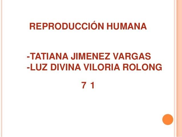 REPRODUCCIÓN HUMANA -TATIANA JIMENEZ VARGAS -LUZ DIVINA VILORIA ROLONG 71