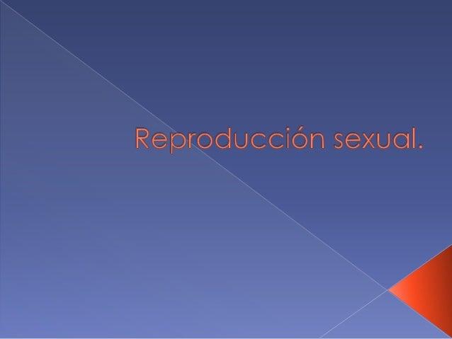  La sexualidad se concibe como el intercambio de material genético entre dos individuos, proceso que se puede dar indepen...