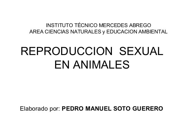 REPRODUCCION SEXUAL EN ANIMALES INSTITUTO TÉCNICO MERCEDES ABREGO AREA CIENCIAS NATURALES y EDUCACION AMBIENTAL Elaborado ...