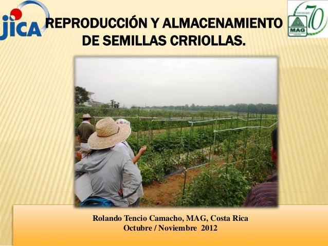 Rolando Tencio Camacho, MAG, Costa Rica Octubre / Noviembre 2012 REPRODUCCIÓN Y ALMACENAMIENTO DE SEMILLAS CRRIOLLAS.