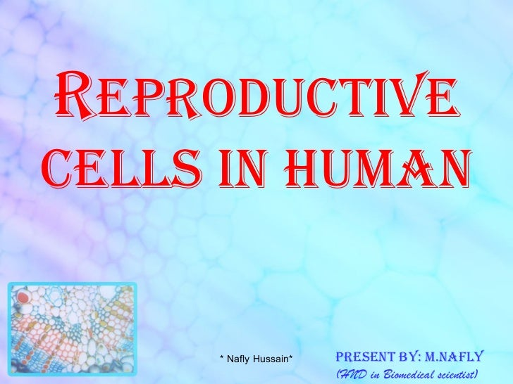 R eproductive cells in human Present by: m.nafly (HND in Biomedical scientist) * Nafly Hussain*