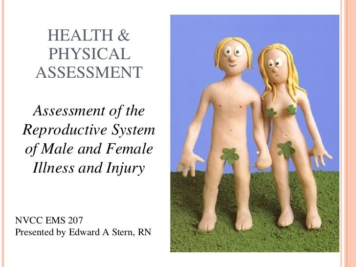 HEALTH & PHYSICAL ASSESSMENT Assessment of the Reproductive System of Male and Female Illness and Injury NVCC EMS 207 Pres...