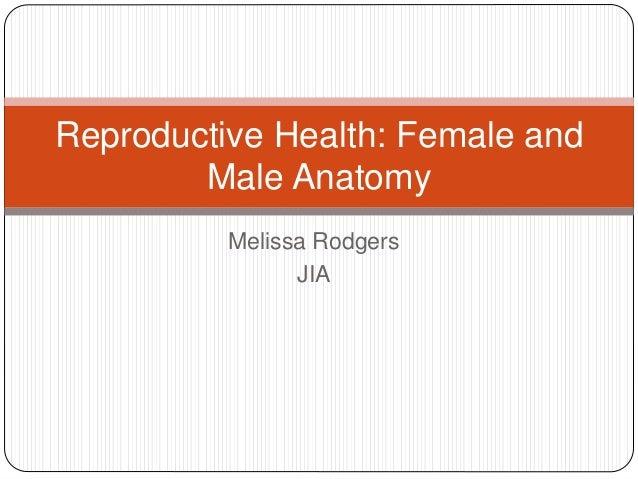 Reproductive health   anantomy