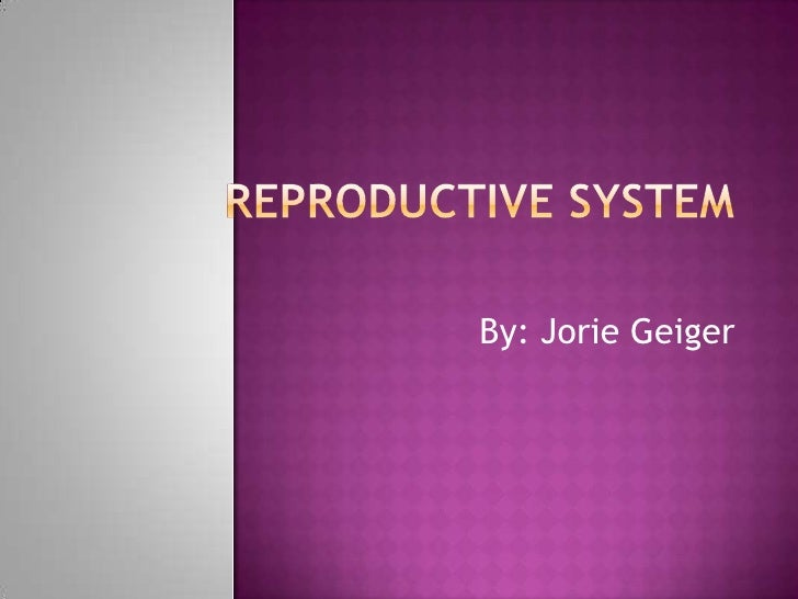 Reproductive System<br />By: Jorie Geiger<br />