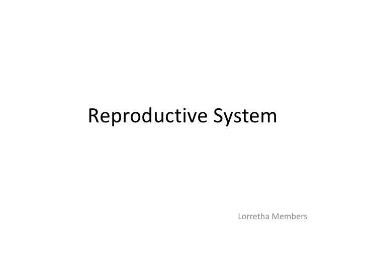 Reproductive System<br />Lorretha Members<br />