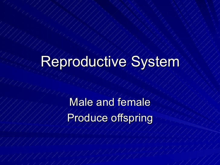Reproductive System Male and female Produce offspring