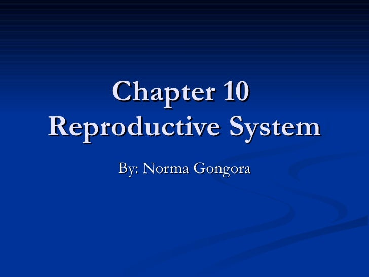 Chapter 10  Reproductive System By: Norma Gongora