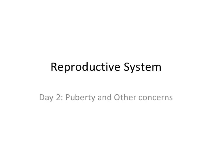 Reproductive System Day 2: Puberty and Other concerns