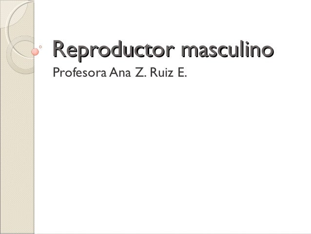 Reproductor masculinoReproductor masculino Profesora Ana Z. Ruiz E.