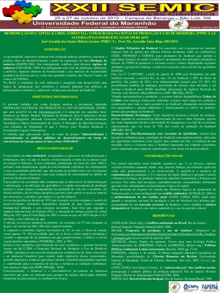 Reprodução do capital e crise ambiental o programa nacional de produção e uso de biodiesel (pnpb) e as alternativas energéticas de mercado