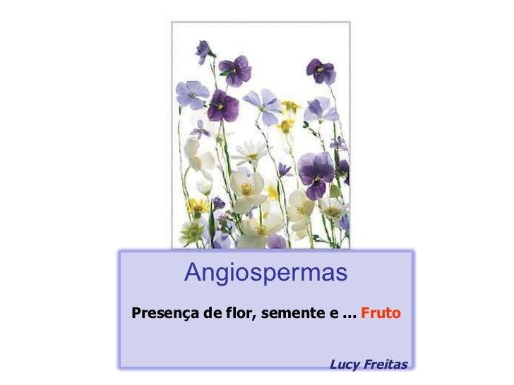Angiospermas Presença de flor, semente e ...  Fruto Lucy Freitas
