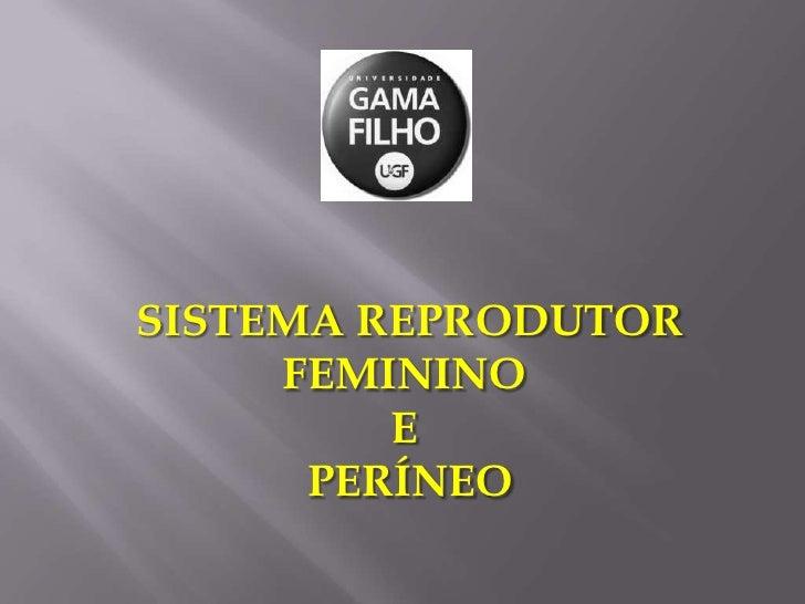 SISTEMA REPRODUTOR<br />FEMININO <br />E <br />PERÍNEO<br />