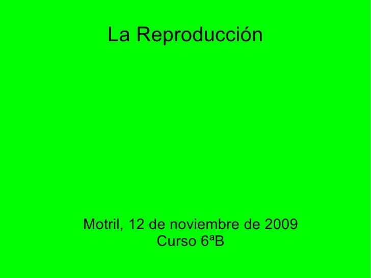 La Reproducción <ul><ul><li>Motril, 12 de noviembre de 2009 </li></ul></ul><ul><ul><li>Curso 6ªB </li></ul></ul>