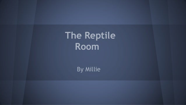 The Reptile Room By Millie