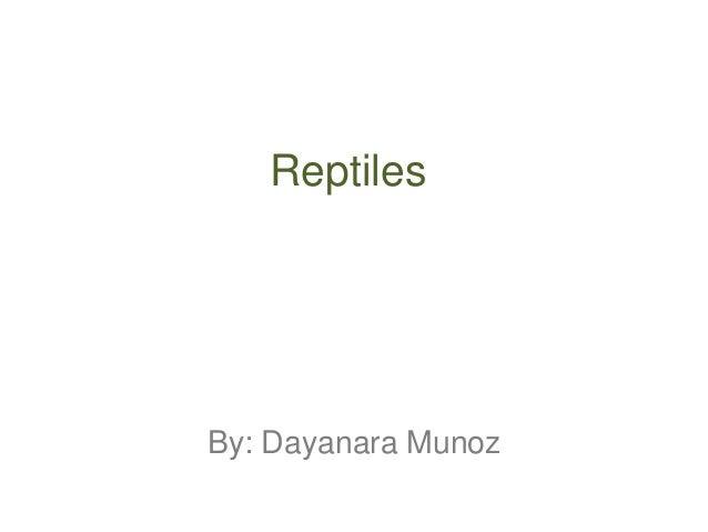 ReptilesBy: Dayanara Munoz