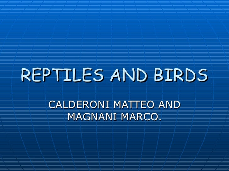 REPTILES AND BIRDS  CALDERONI MATTEO AND     MAGNANI MARCO.