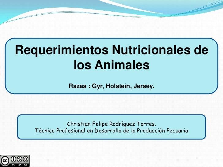 Requerimientos nutricionales de los bovinos