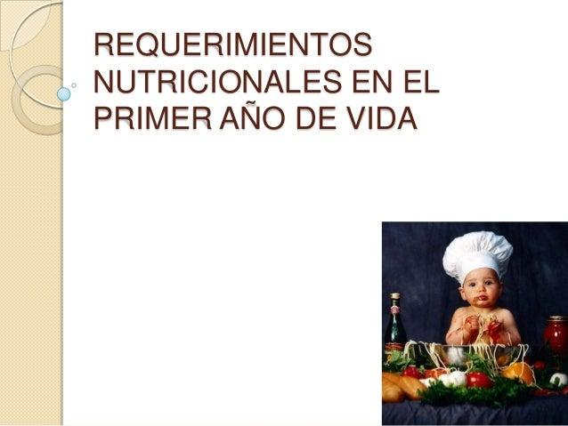 REQUERIMIENTOS NUTRICIONALES EN EL PRIMER AÑO DE VIDA