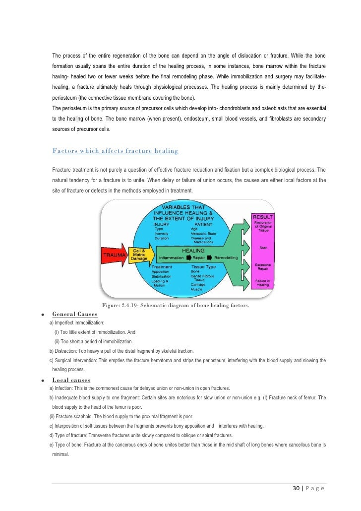 Msc thesis literature review