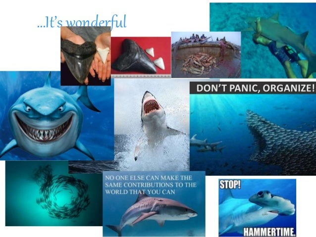Marine biology pictures