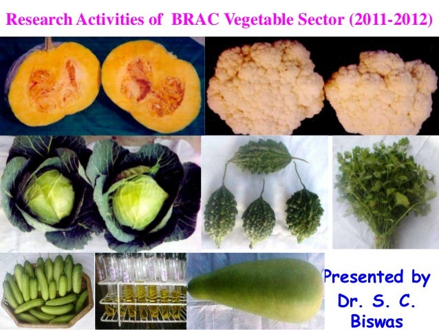 Research Activities of BRAC Vegetable Sector (2011-2012)                                         Presented by             ...