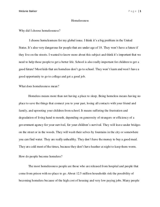 Mental illness and homelessness essay