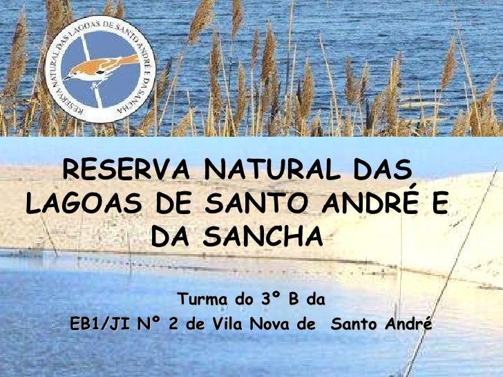Turma do 3º B da EB1/JI Nº 2 de Vila Nova de  Santo André RESERVA NATURAL DAS LAGOAS DE SANTO ANDRÉ E DA SANCHA