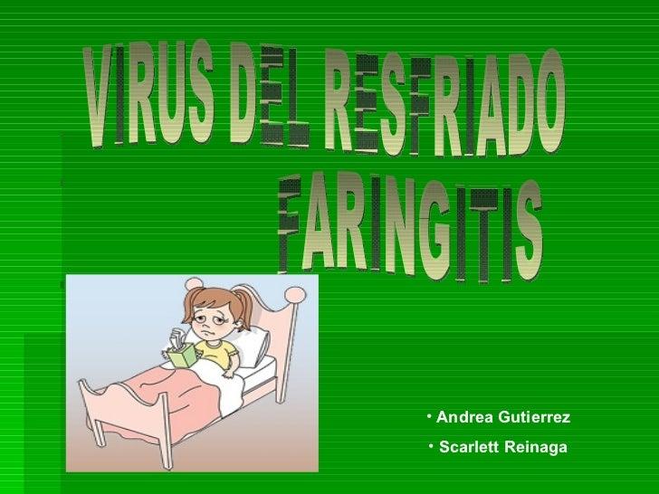 VIRUS DEL RESFRIADO FARINGITIS <ul><li>Andrea Gutierrez </li></ul><ul><li>Scarlett Reinaga </li></ul>