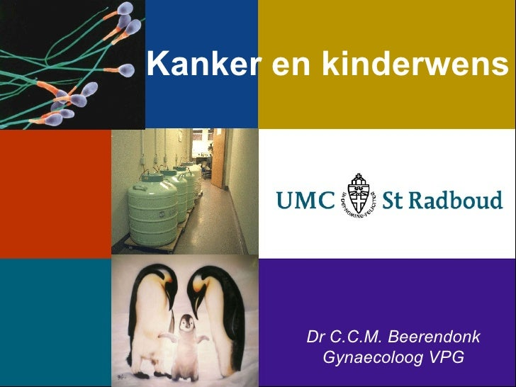 Kanker en kinderwens Dr C.C.M. Beerendonk Gynaecoloog VPG
