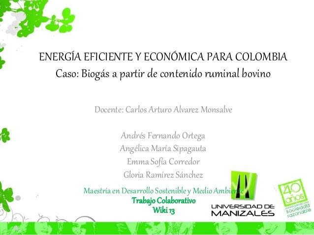 ENERGÍA EFICIENTE Y ECONÓMICA PARA COLOMBIA  Caso: Biogás a partir de contenido ruminal bovino  Docente: Carlos Arturo Alv...