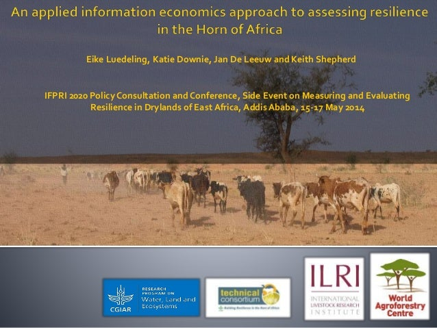 Eike Luedeling, Katie Downie, Jan De Leeuw and Keith Shepherd IFPRI 2020 Policy Consultation and Conference, Side Event on...