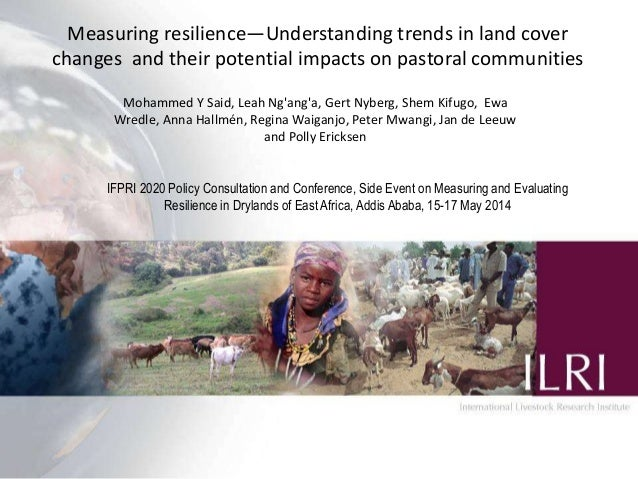 Measuring resilience—Understanding trends in land cover changes and their potential impacts on pastoral communities