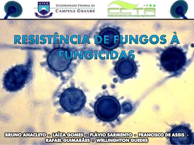 Fitopatologia - Resistência de Fungos à Fungicidas