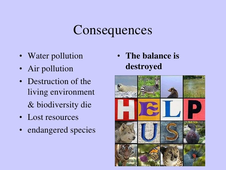 essay on pollutionwater pollution