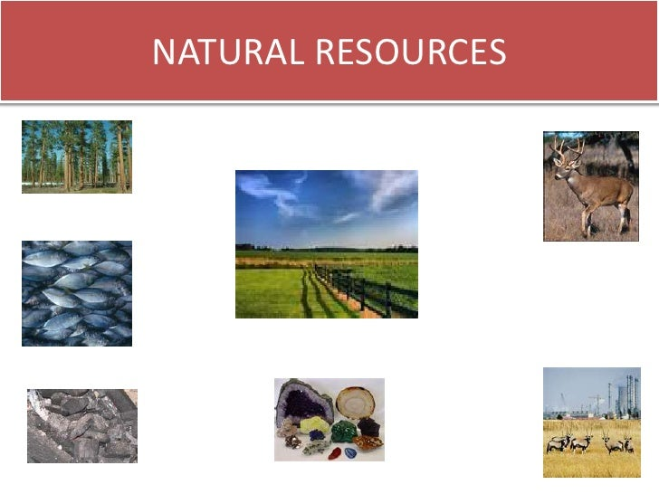 natural resources of pakistan essay Pakistan's geography, climate, and environment have shaped life in this country be sure to read more about pakistan's natural resources and if you're visiting .